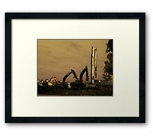 They Grow Up So Quick  Framed Print
