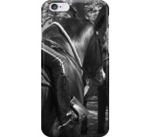 Gallant Steed IV iPhone Case/Skin