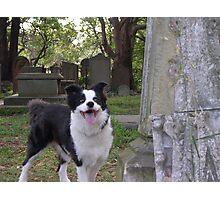 Jack 2000 Photographic Print