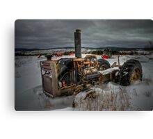Winter's Grip... Canvas Print