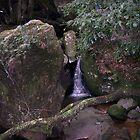 mountain stream by barnesy64