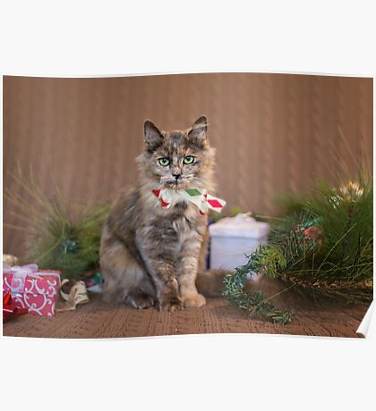 Christmas Tortie Poster
