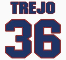 National football player Stephen Trejo jersey 36 by imsport