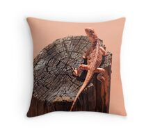 Central Netted Dragon,Alice Springs, Australia Throw Pillow