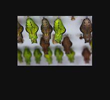 Swallowtail Chrysalises  Mens V-Neck T-Shirt