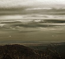 A View from Mt Sterling by Samantha Cole-Surjan