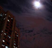 Moonwatch by frozenfa
