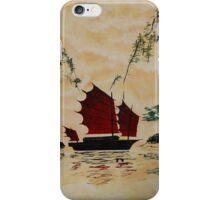 The Story is in the Reflections iPhone Case/Skin