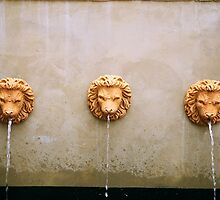 Spitting Lions by James J. Ravenel, III