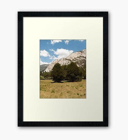 Two trees in the valley landscape photography Framed Print
