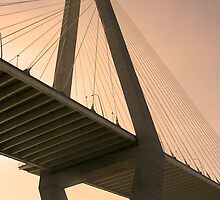 Bridge Series by Wendy Mogul