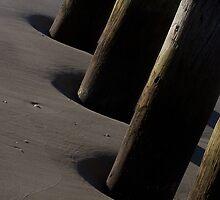 pilings by JLPhotos