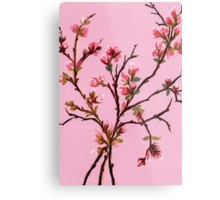 Cherry Blossoms from Amphai Metal Print