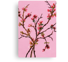 Cherry Blossoms from Amphai Canvas Print