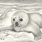 ACEO Arctic Innocence - Seal Pup by John Houle