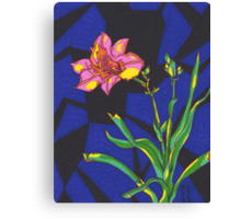 The Healing Lily Canvas Print