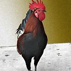Rooster #1 by Hank Stallings