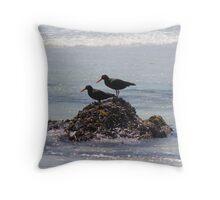 Black Oyster Catchers Throw Pillow