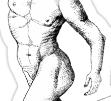 Anatomy of a Dancer Sticker