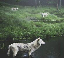 Lake Wolves by kiddruba