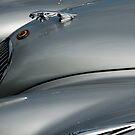 Jaguar XK 120 Roadster frontispiece side view by ragman