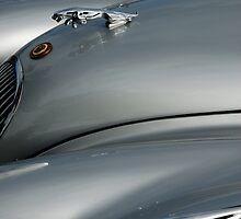 Jaguar XK 120 Roadster frontispiece side view by ragman
