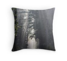 The youngest day Throw Pillow