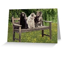 A shaggy dog story Greeting Card