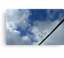 Sparkling Bubbles In The Sky - Raindrops on Web - NZ Canvas Print