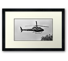 Flying Low Framed Print