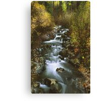 Brush Creek Canvas Print