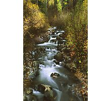 Brush Creek Photographic Print