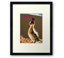 Merry Christmas - Duckling - NZ Framed Print