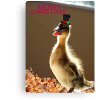 Merry Christmas - Duckling - NZ Canvas Print