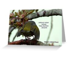 Spread your wings this festive season! - Silvereye Greeting card Greeting Card