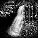 Silver Falls, Tasmania by CezB