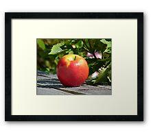 An Apple... - NZ Framed Print