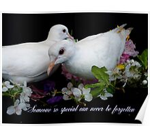 Someone So Special Can Never Be Forgotten - White Doves - NZ Poster