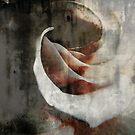 Hint Of Beauty by Suni Pruett