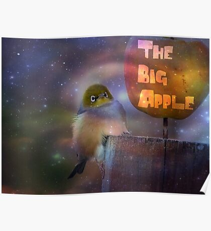 The Big Apple - Silvereye - NZ Poster