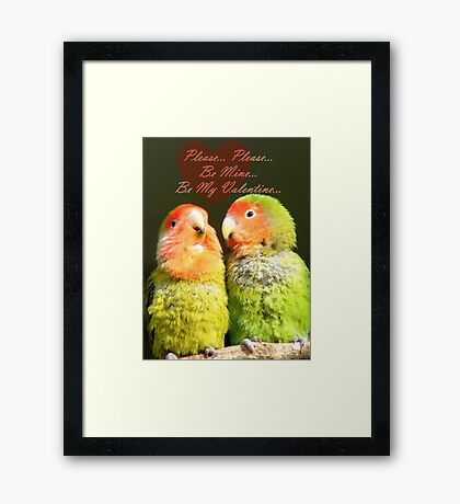 Please.. Please.. Be Mine, Be My Valentine - Love Birds - NZ Framed Print