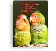 Please.. Please.. Be Mine, Be My Valentine - Love Birds - NZ Canvas Print