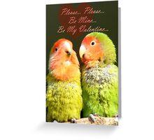 Please.. Please.. Be Mine, Be My Valentine - Love Birds - NZ Greeting Card
