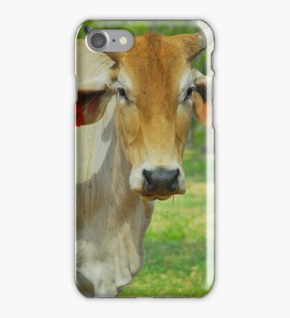 Number 91 Your Hay is Ready ! iPhone Case/Skin