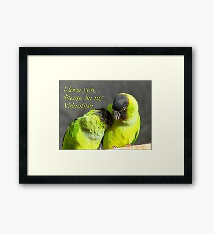 I Love You.. Please Be My Valentine.. - Nanday Conures - NZ Framed Print