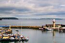 Harbour, Dunmore East, County Waterford, Ireland by Andrew Jones