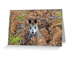 Can He See Me Now? Greeting Card