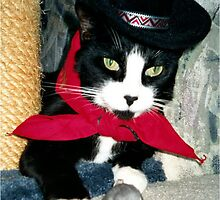 Oreo The Cowboy Cat, DFW Texas, by Lisa Marie Vigilo by Lisa Marie  Vigilo