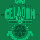 Celadon Gym by Azafran
