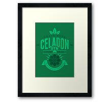 Celadon Gym Framed Print